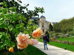 Verdure à Paris : Parcs et Jardins Parisiens par l'Hôtel de Seine