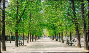 A hotel close to the Jardin du Luxembourg Paris (Luxembourg Garden)